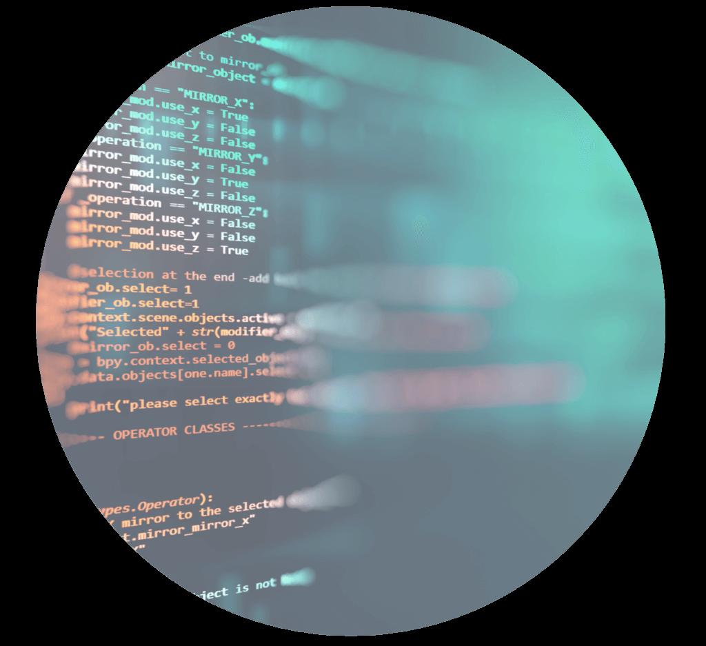 business software development code